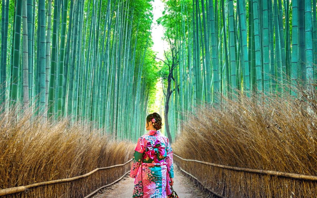 Sommeil et Sérénité 2 : Voyage au Japon – Goshiki Numa